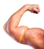 Strong hand. With big biceps and centimeter of athlete stock photography