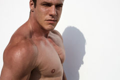 Strong and handsom. Male model posing in half body topless opposit white wall Stock Image