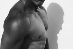 Strong and handsom. Male model posing in half body topless opposit white wall Royalty Free Stock Image