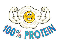 A strong healthy egg Royalty Free Stock Images