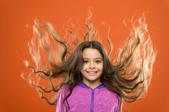 Strong and healthy hair concept. How to treat curly hair. Nice and tidy hairstyle. Easy tips making hairstyle for kids. Small child long hair. Charming beauty stock images