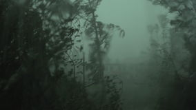A strong hurricane outside the window. The lights go out in the apartment, the wind breaks the tree, strong wind and rain stock footage