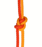 Strong knot. Tied by a rope isolated on a white background Royalty Free Stock Images