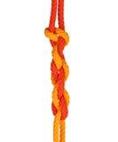Strong knot Stock Photos