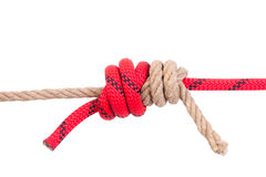 Strong knot Stock Photography