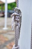 Strong knot Royalty Free Stock Photo