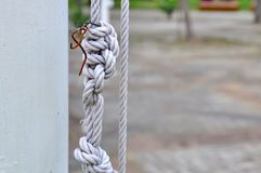 Strong knot Stock Images