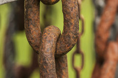 Old Strong Chain  Link. Strength in unity, lasting when united Royalty Free Stock Photography