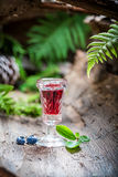 Strong liqueur with alcohol and blueberries Stock Photography