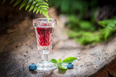 Strong liqueur with alcohol and blueberries in summer Stock Photo