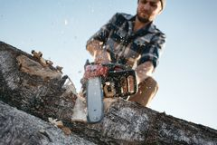 Strong lumberjack wearing plaid shirt and hat use chainsaw in sawmill. Sawdust fly apart stock image