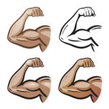 Strong male arm, hand muscles, biceps icon or symbol. Gym, health, protein logo. Cartoon vector illustration. Isolated on white background Stock Image