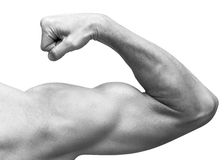 Strong male arm shows biceps. Close-up black and white. Studio photo isolated on white Royalty Free Stock Images