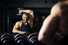 A strong male bodybuilder Royalty Free Stock Photo