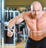 Strong male Bodybuilder training in gym Stock Photos