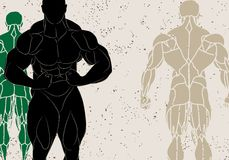 Strong man. Vector illustration of a strong man silhouette Royalty Free Stock Photo