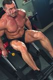 Strong man bodybuilder doing legs exercises. Sports concept. Strong mature man working out on the legs simulators in the gym royalty free stock images