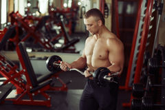Strong man bodybuilder in a gym exercising with a barbell Royalty Free Stock Image