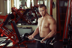 Strong man bodybuilder in the gym exercising with a barbell, doing Royalty Free Stock Images