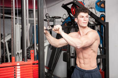 Strong man exercising in the gym Stock Image