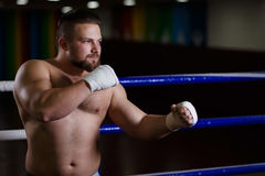 Strong man fighter standing in the boxing ring Stock Photos