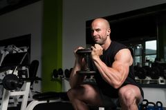 Quadriceps And Glutes Exercise In A Gym. Strong Man In The Gym Exercising Quadriceps And Glutes With Dumbbells - Muscular Athletic Bodybuilder Fitness Model Stock Images