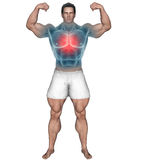 Strong man with highlighted chest area vector illustration