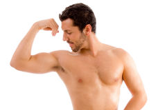 Strong man looking his muscles royalty free stock photos