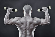 Strong man with minuscule dumbbells Stock Image