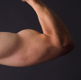 Strong man's arm Stock Image
