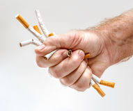 Strong man's fist with cigarettes. As a concept idea of smoking issues Royalty Free Stock Photography