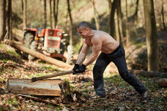 Strong man splitting logs Stock Images