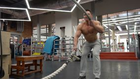 Strong man working out with Battle Ropes in a gym. SLOW MOTION: Strong man working out with Battle Ropes in a gym stock video