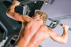 Strong man working out in gym Royalty Free Stock Photo