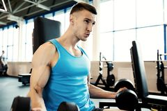 Strong Man Working Out in Gym royalty free stock images