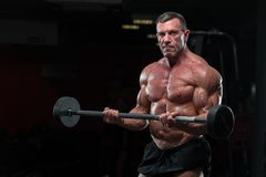 Strong mature bodybulding man in the gym. Portrait of Mature fitness model lifting barbell in gym. Strong muscular bodybuilder with naked torso posing in gym stock photo