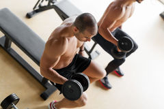 Strong men lifting dumbbells sitting on bench Royalty Free Stock Photography