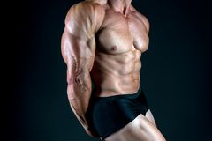 Strong muscles and power. male body. muscular macho man. diet and fitness. sport as healthy lifestyle. bodybuilder. Workout in gym. man take steroids and royalty free stock images