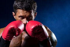 Strong muscular boxer in red boxing gloves on a blue background. A man in a boxing stand Stock Image