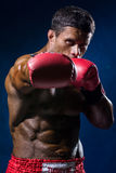 Strong muscular boxer in red boxing gloves. A man in a boxers stance strikes Stock Images