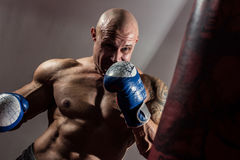 Strong muscular boxer in training. The athlete boxing Stock Photos