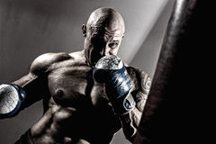 Strong muscular boxer in training. The athlete boxing Royalty Free Stock Image