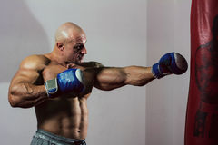 Strong muscular boxer in training. The athlete boxing Royalty Free Stock Photo