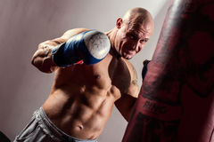 Strong muscular boxer in training. Stock Photos