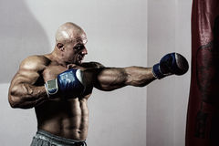 Strong muscular boxer in training. Athlete with boxing pear Royalty Free Stock Images