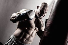 Strong muscular boxer in training. Athlete with boxing pear Royalty Free Stock Photography