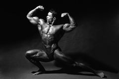 Strong muscular man bodybuilder shows his muscles. Royalty Free Stock Photos
