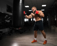 Strong muscular man boxing at the gym. Royalty Free Stock Image