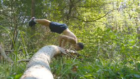 Strong muscular man doing a handstand in a forest. Muscular male fitness guy doing stunts on log at the wood. Athlete. Training performs a handstand at muscle Stock Photos