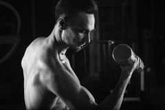 Strong Muscular man with naked torso abs working out in gym doing exercises with dumbell at biceps.  Royalty Free Stock Photos